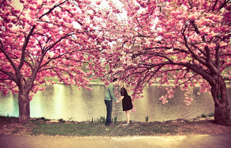 Photo wallpaper autumn, trees, love, nature, girls, mood, romance, beauty, kiss, friendship, guys, relationship, nostalgia, heat, kisses
