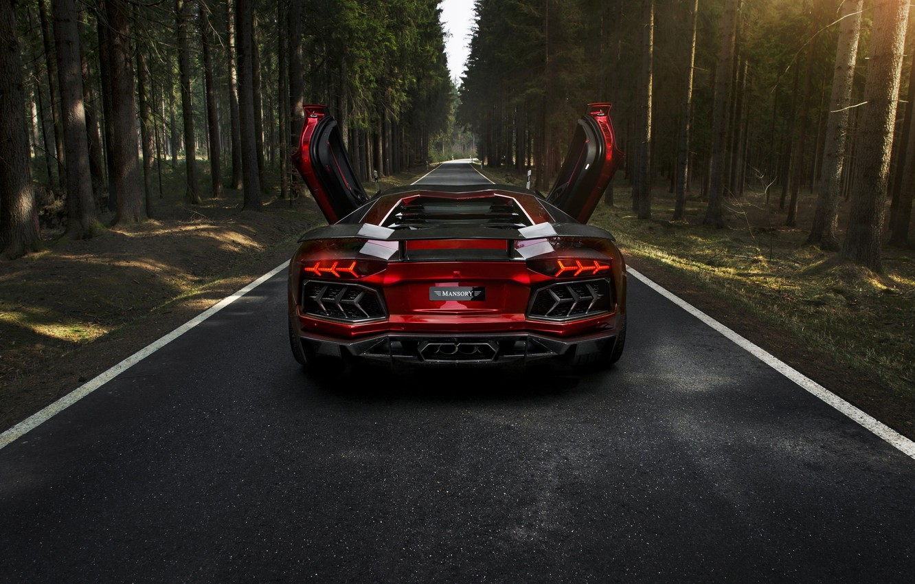 Photo wallpaper forest, mansory, Lamborghini, aventador, lamborghini lp700-4 aventador