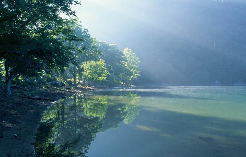 Photo wallpaper water, the sun, light, trees, landscape, nature, fog, lake, shore, light, trees, landscape, nature, water, ...