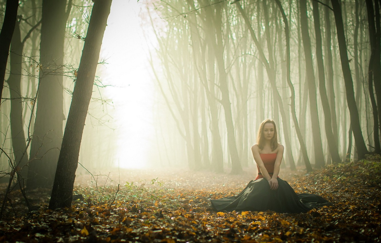 Photo wallpaper autumn, forest, girl, fog