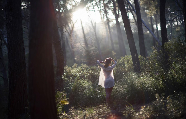 Photo wallpaper forest, girl, Rosa, morning, sunlight