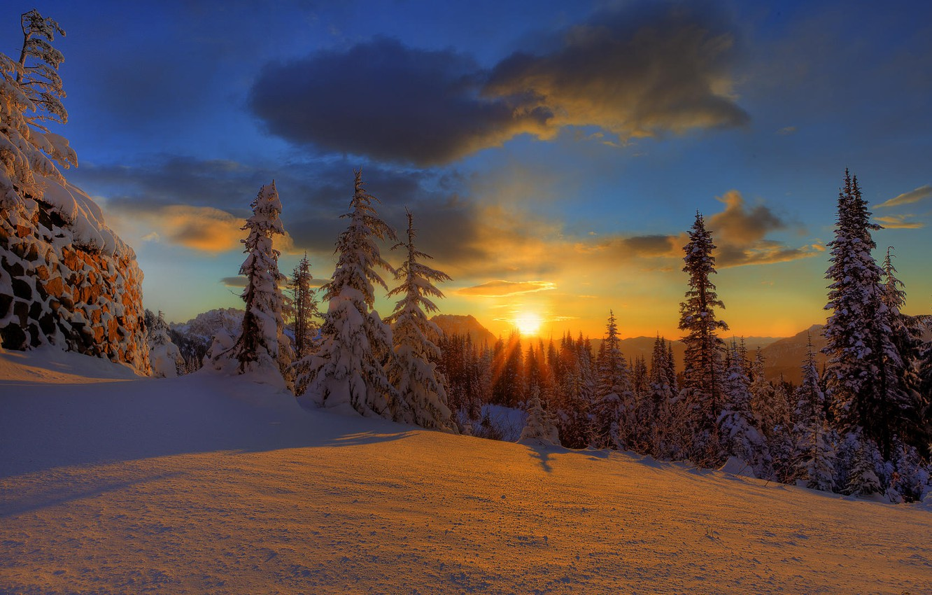 Photo wallpaper winter, forest, the sky, clouds, snow, sunset, nature, tree, beauty