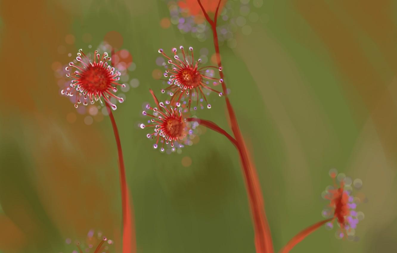 Photo wallpaper flowers, focus, stem, art, flowers