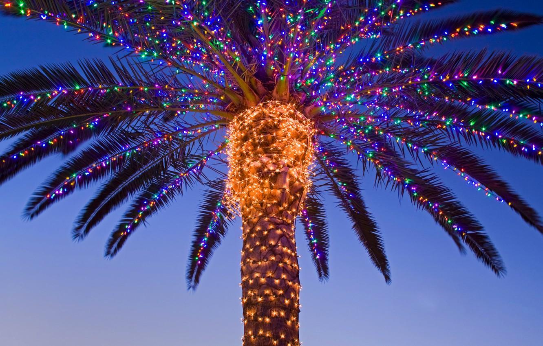 Photo wallpaper Palma, new year, Christmas, CA, USA, garland, Temecula valley