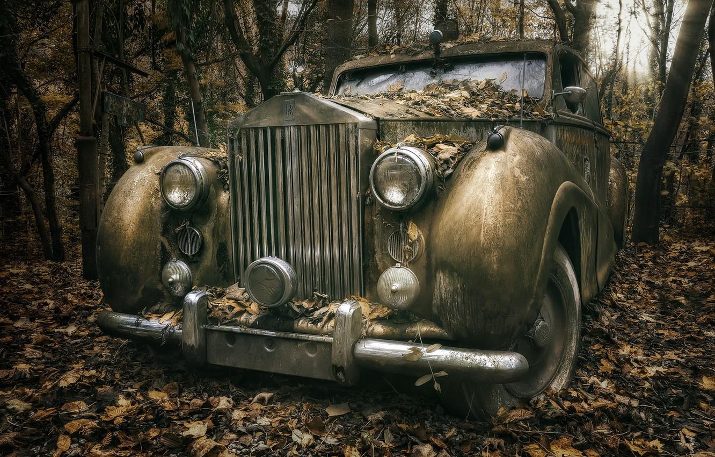 Photo wallpaper machine, forest, Rolls Royce