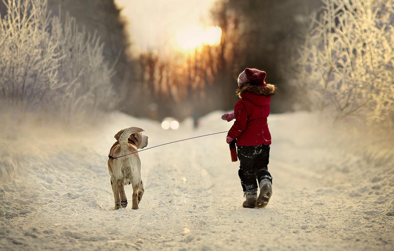 Photo wallpaper winter, road, snow, trees, nature, child, dog