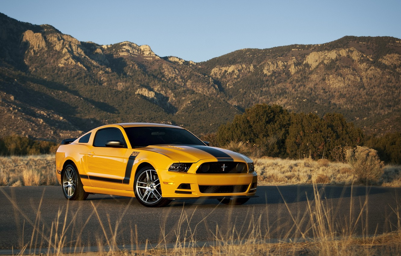 Photo wallpaper Ford, ford mustang, muscle car, rechange, boss 302
