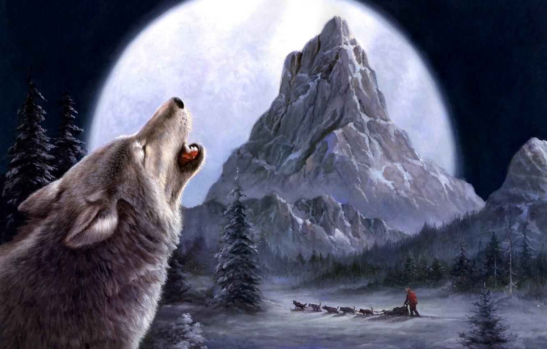 Photo wallpaper winter, wolves, painting, Tok Hwang