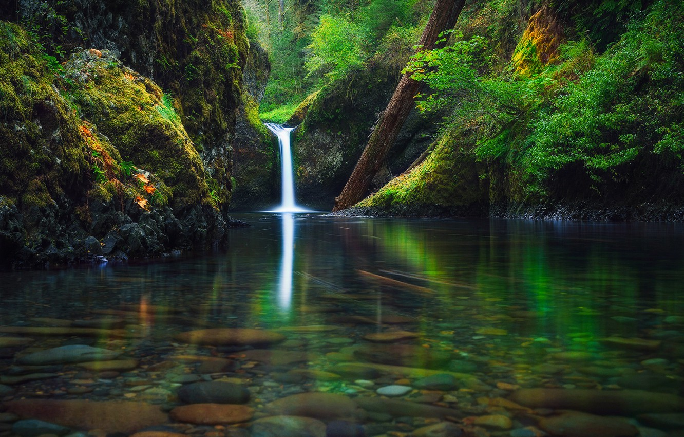 Photo wallpaper autumn, forest, river, waterfall, Oregon, USA, state, September