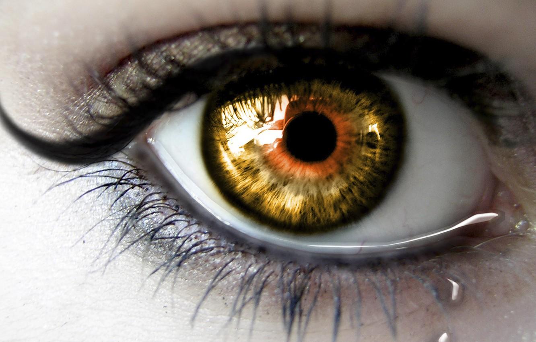 Photo wallpaper eyelashes, Eyes, the pupil, tear