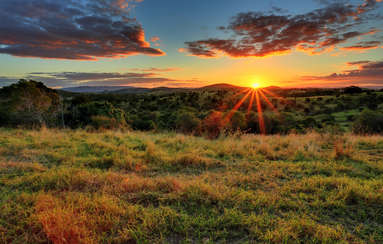 Photo wallpaper field, grass, the sun, clouds, rays, trees, sunset