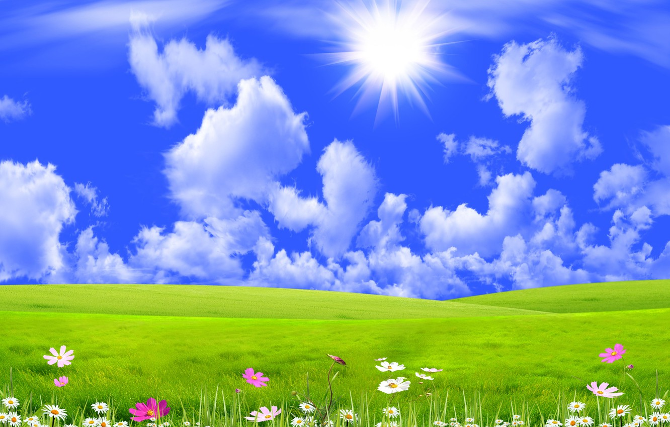 Photo wallpaper the sky, grass, the sun, clouds, rays, flowers, collage, meadow