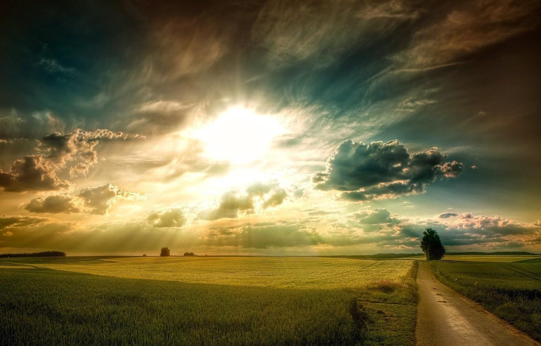 Photo wallpaper ROAD, TREE, GRASS, The SKY, The SUN, CLOUDS, PLAIN, SUNSET, LIGHT, FIELD, RAYS, GREEN, DAWN
