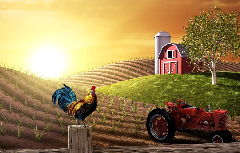 Photo wallpaper field, collage, tractor, farm, cock