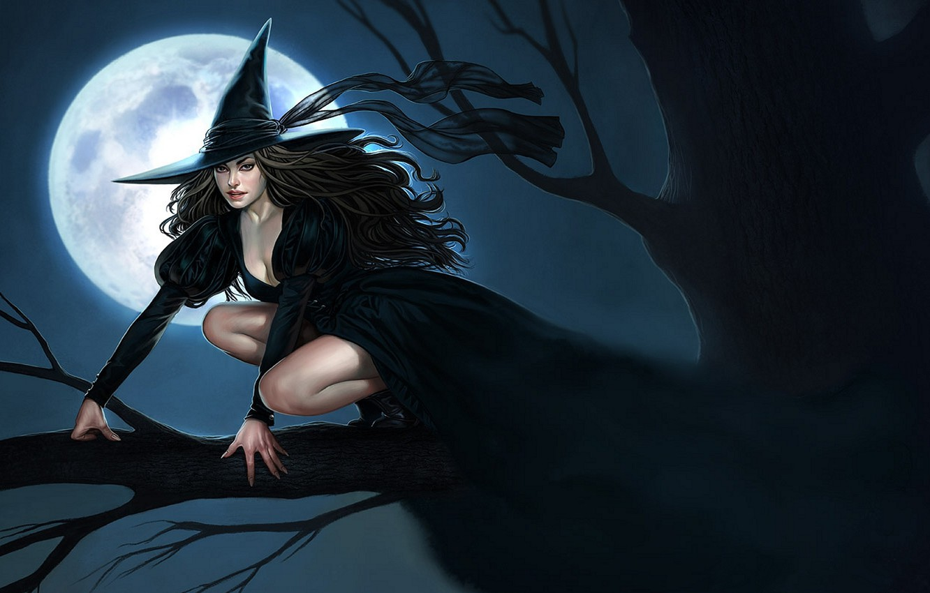 Photo wallpaper night, tree, branch, hat, tape, Halloween, witch, the full moon, Witch