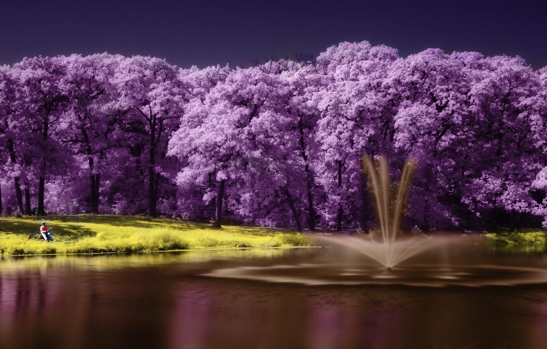Photo wallpaper purple, landscape, lake, tree, lake, tree, scenery, purple
