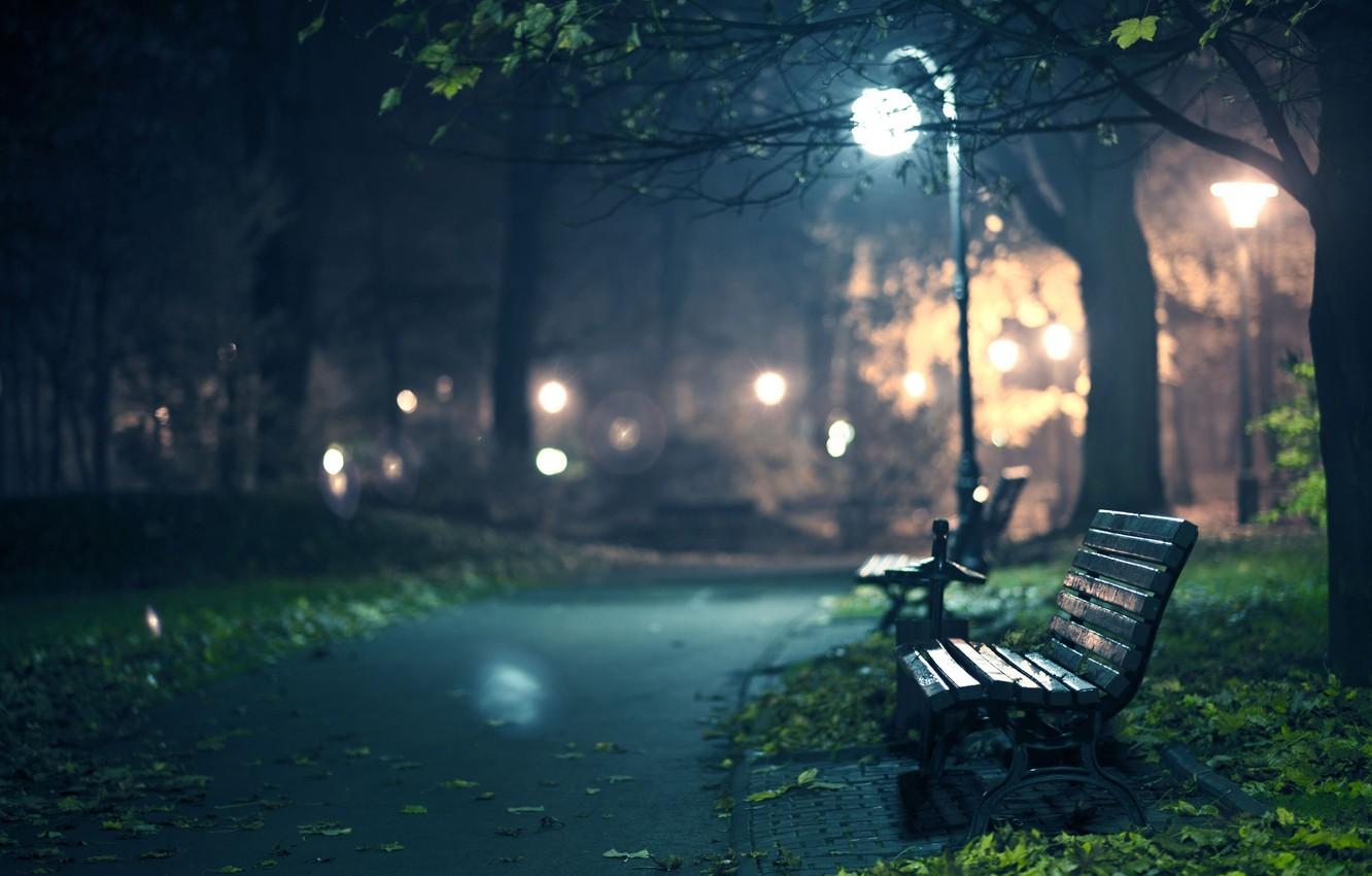 Photo wallpaper autumn, leaves, light, trees, bench, night, lights, tree, the darkness, romance, foliage, track, the evening, …