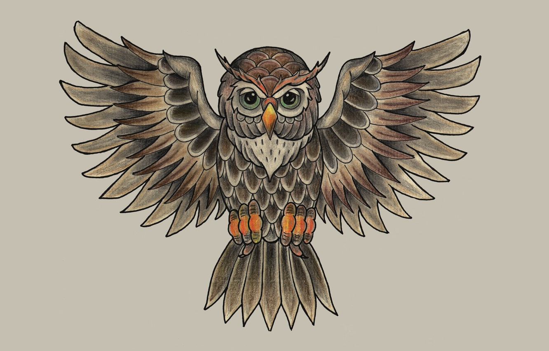 Photo wallpaper owl, bird, painting, light background, owl
