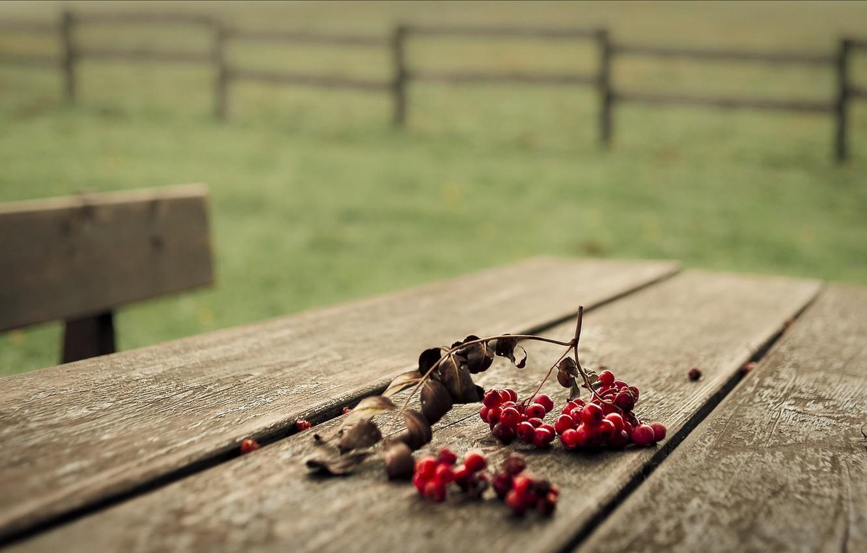 Photo wallpaper macro, berries, table