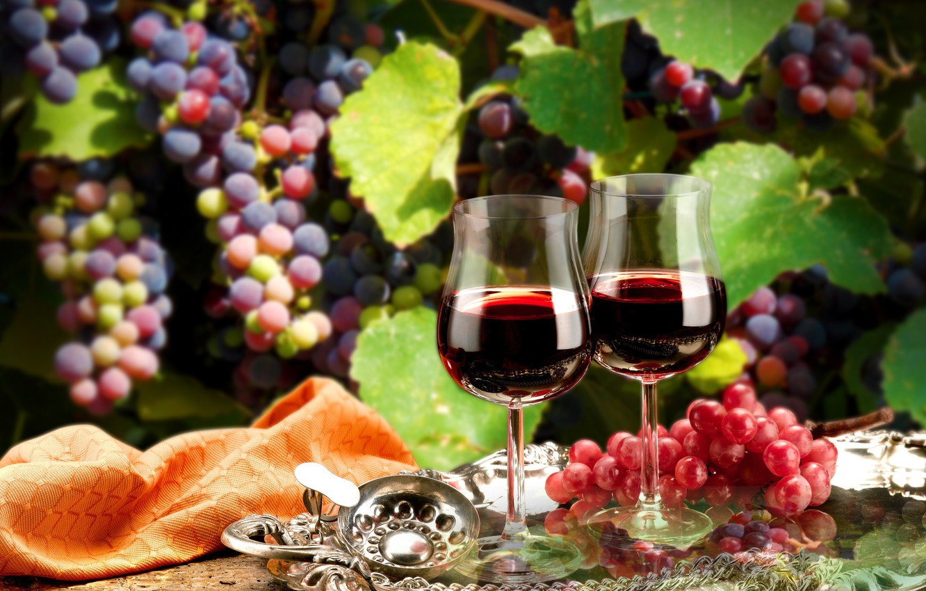 Photo wallpaper leaves, branches, wine, red, glasses, grapes, tray
