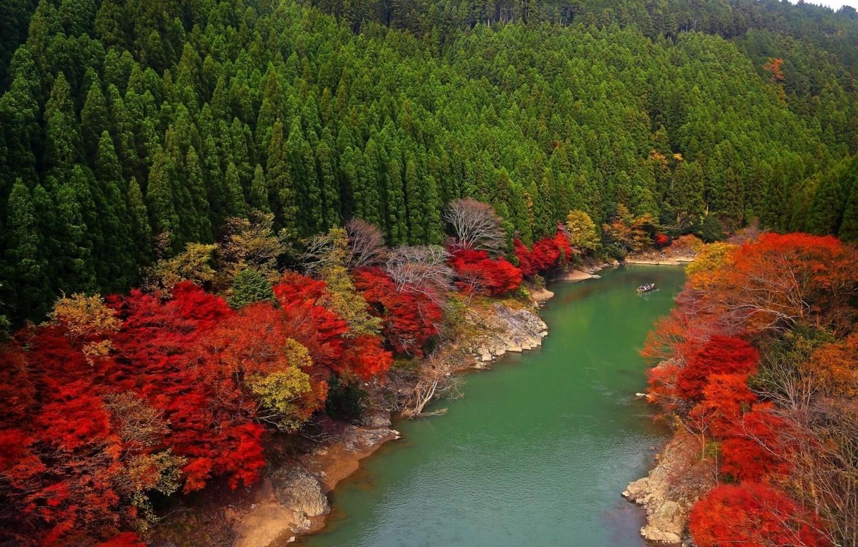 Photo wallpaper river, nature, autumn