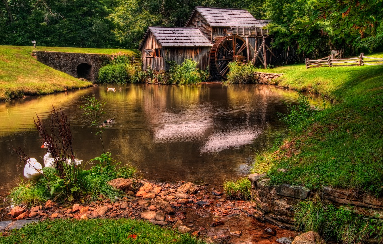 Photo wallpaper forest, grass, landscape, nature, river, green, old, colors, hdr, mill, grass, beautiful, forest, architecture, green, …