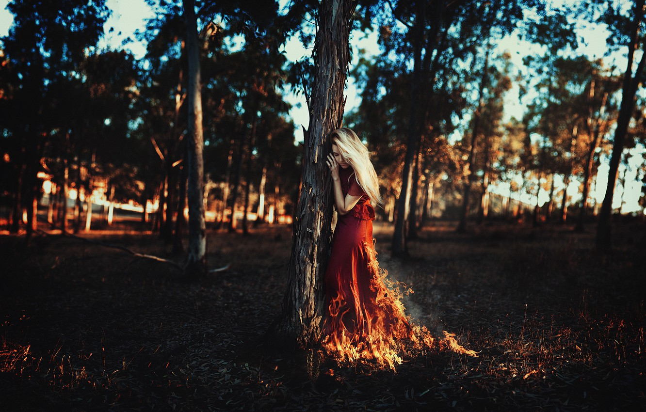 Photo wallpaper leaves, girl, the sun, trees, branches, fire, hair, red dress