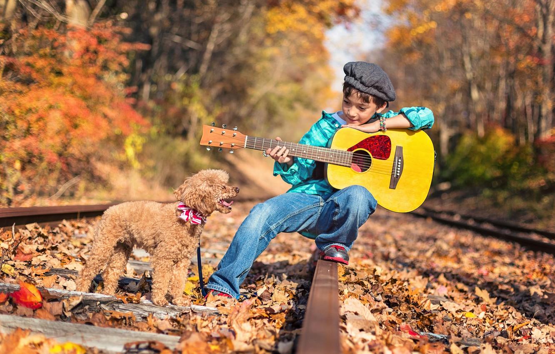 Photo wallpaper road, autumn, forest, nature, rails, guitar, dog, boy, child, poodle, dog