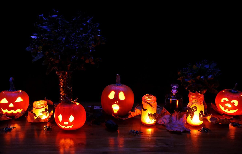 Photo wallpaper cat, leaves, light, cats, night, lights, holiday, magic, spider, candles, perfume, spider, lights, pumpkin, Halloween, …