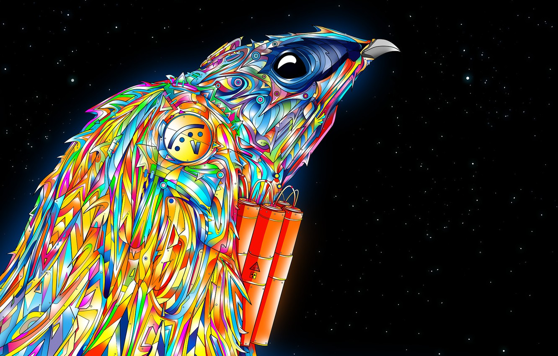 Photo wallpaper color, stars, bird, Falcon, matei apostolescu, explosives