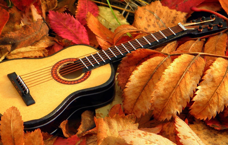 Photo wallpaper leaves, music, guitar