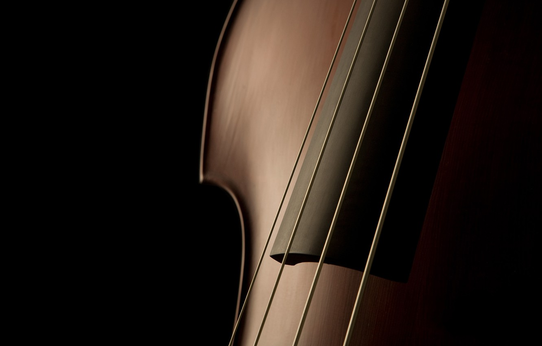 Photo wallpaper music, music, macro photos, macro musical instruments