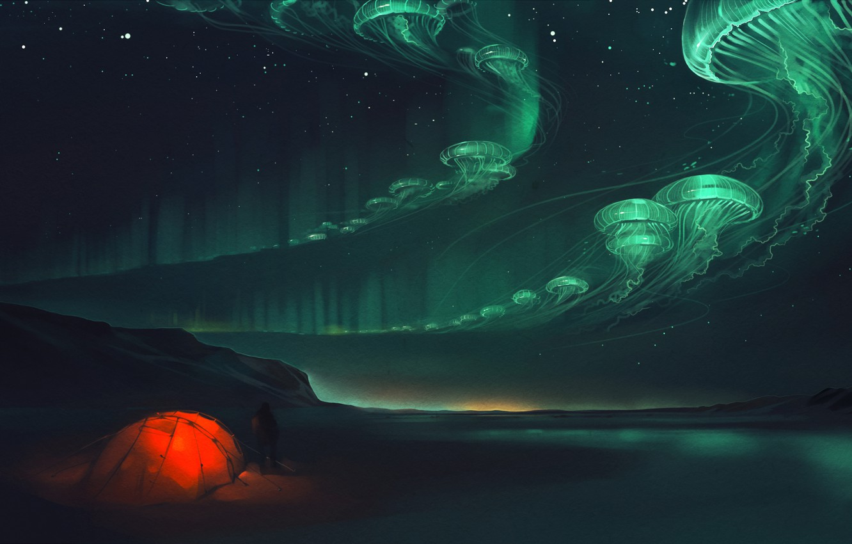Photo wallpaper night, lights, jellyfish, tent, art
