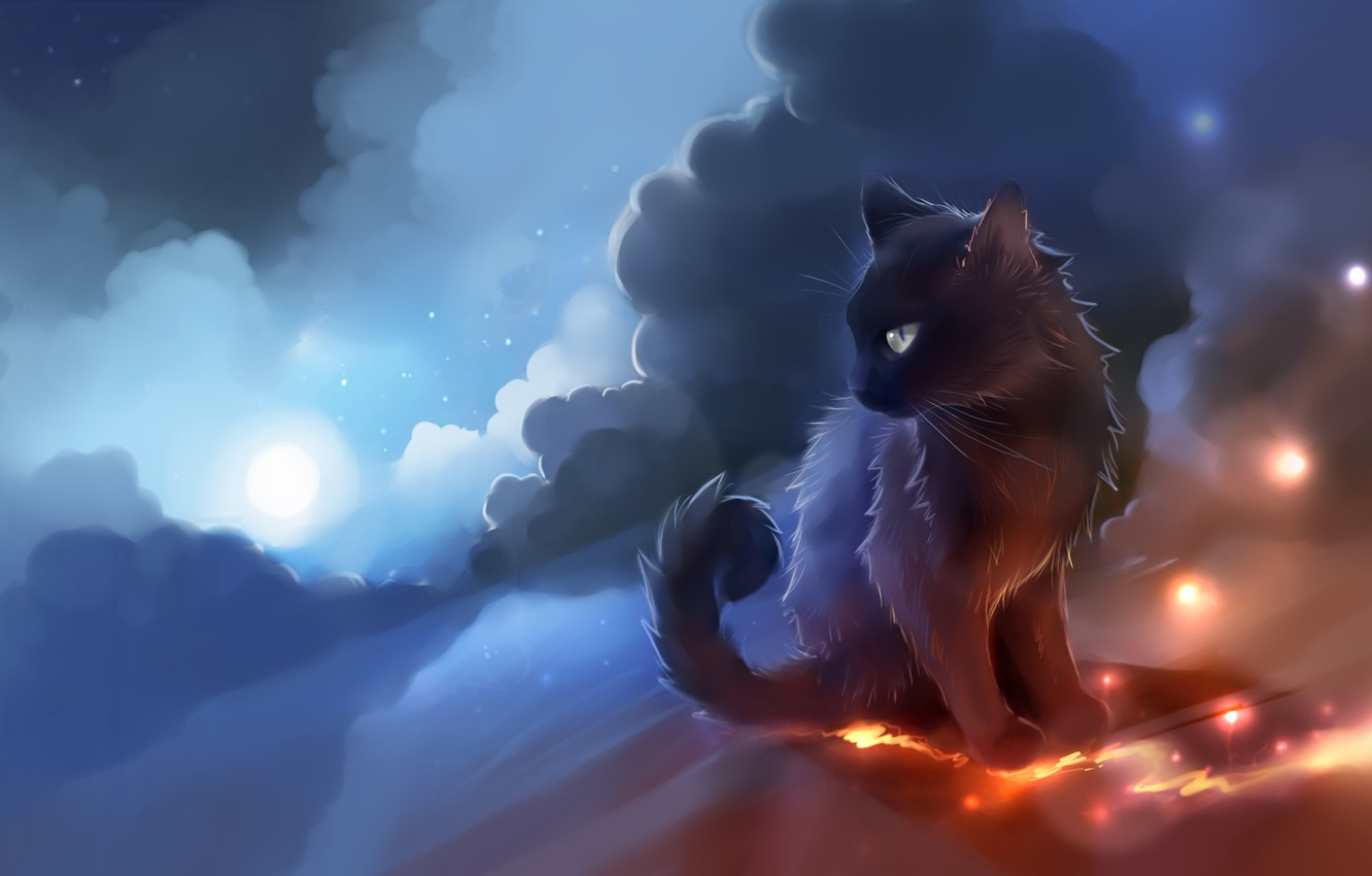 Photo wallpaper cat, the sky, clouds, the moon, lights, black, apofiss