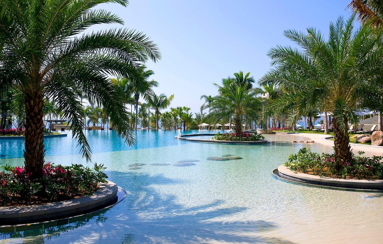 Photo wallpaper trees, flowers, palm trees, pool, resort, sun loungers, exterior, Sanya, Sanya