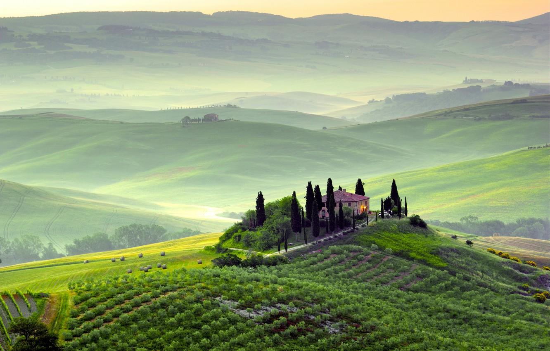 Photo wallpaper greens, trees, landscape, nature, fog, dawn, hills, field, morning, Italy, Italy, Tuscany, Toscana, Pienza, Pienza, …