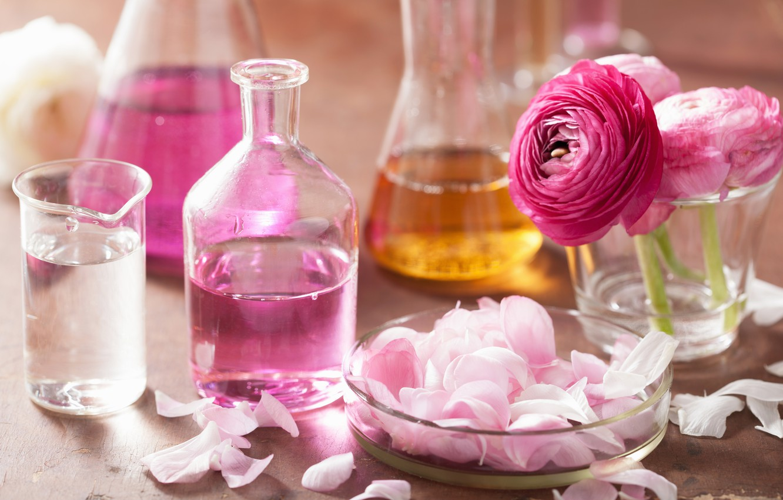 Photo wallpaper flowers, roses, petals, still life, pink flowers, spa
