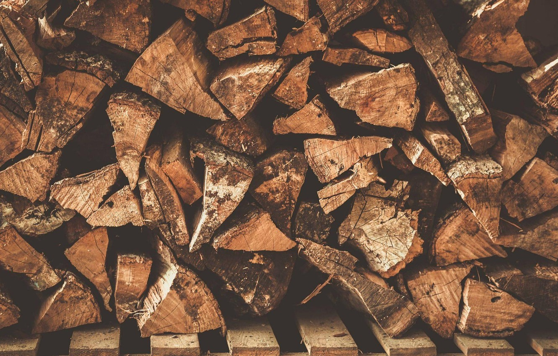 Photo wallpaper tree, texture, logs, wood, texture