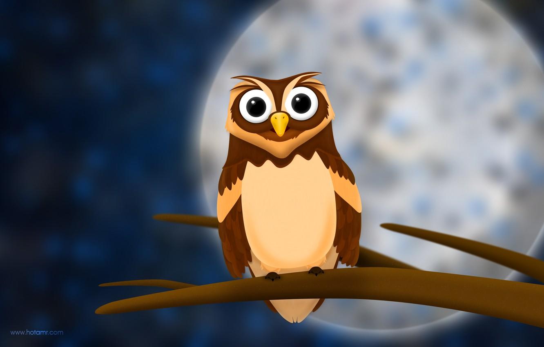 Photo wallpaper look, night, owl, the moon, branch