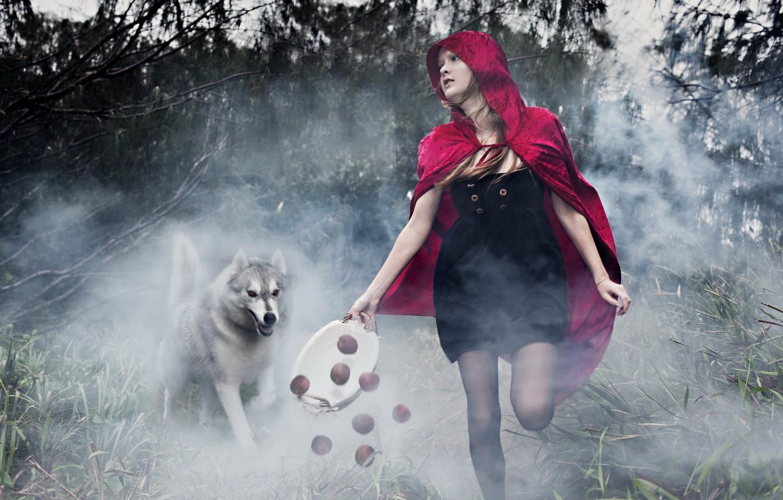 Photo wallpaper wolf, tale, girl, installation