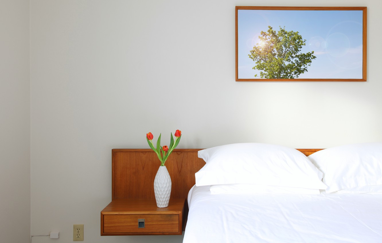 Photo wallpaper flowers, photo, photo, bed, outlet, tulips, red, table, vase