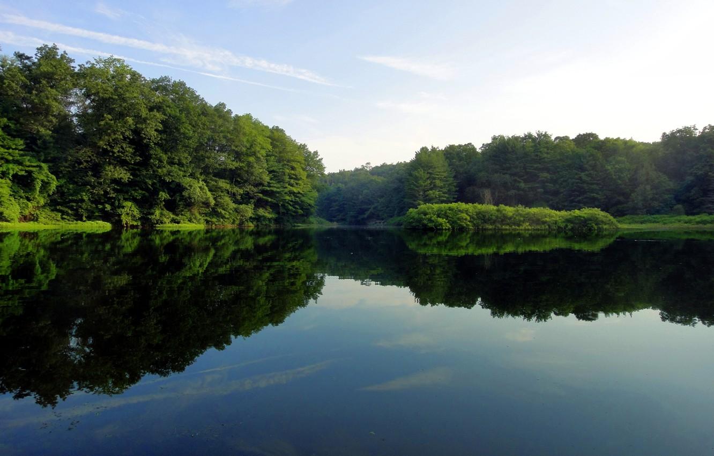 Photo wallpaper greens, water, trees, lake, surface, reflection