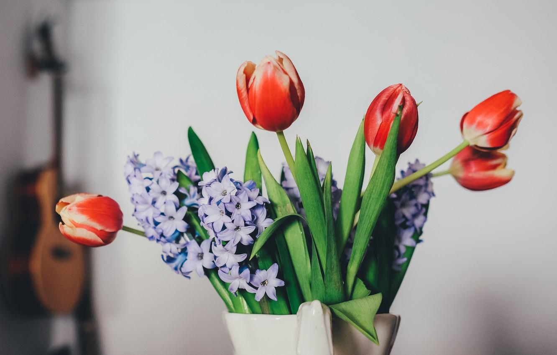 Photo wallpaper flowers, petals, tulips