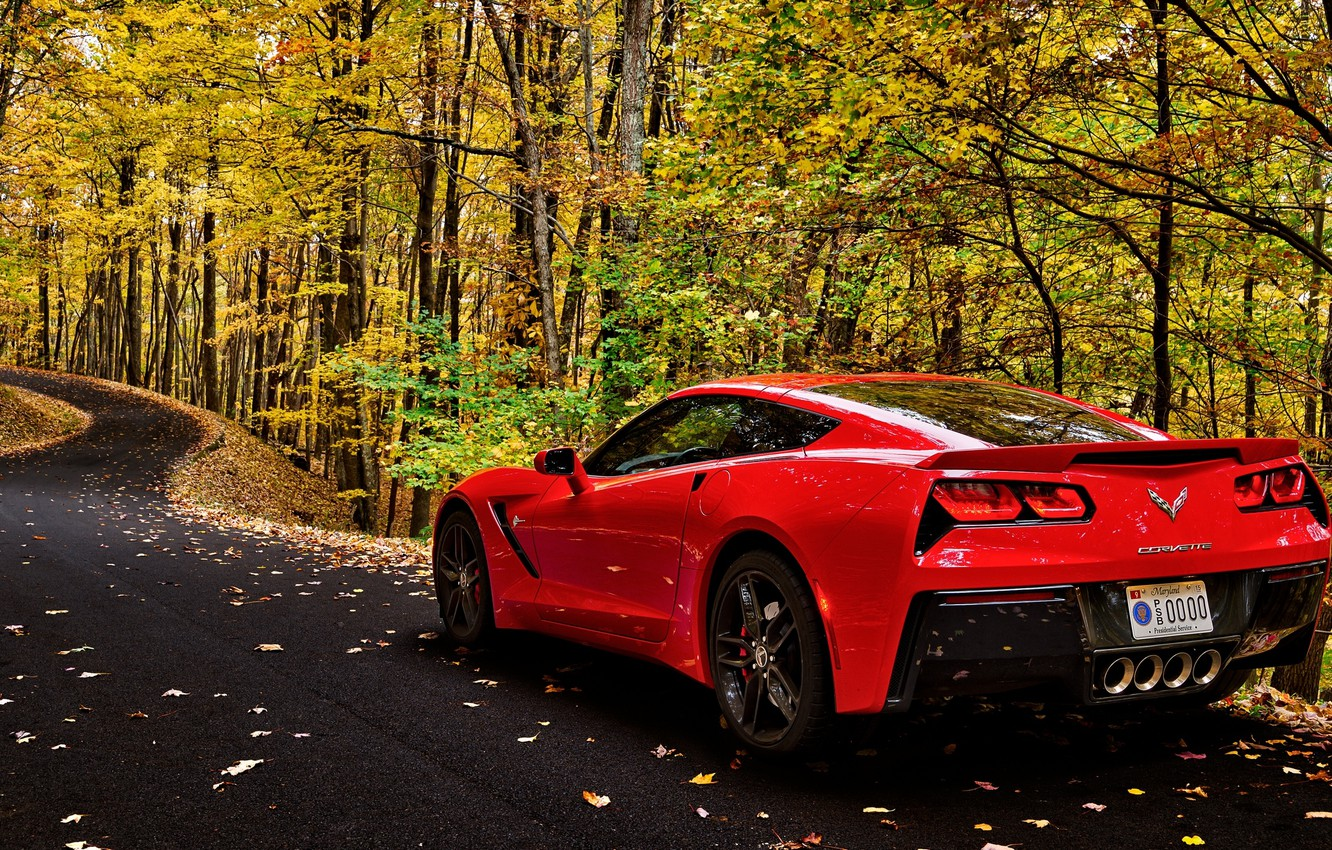Photo wallpaper road, car, autumn, forest, leaves, trees, corvette, forest, car, chevrolet, road, trees, nature, autumn, leaves