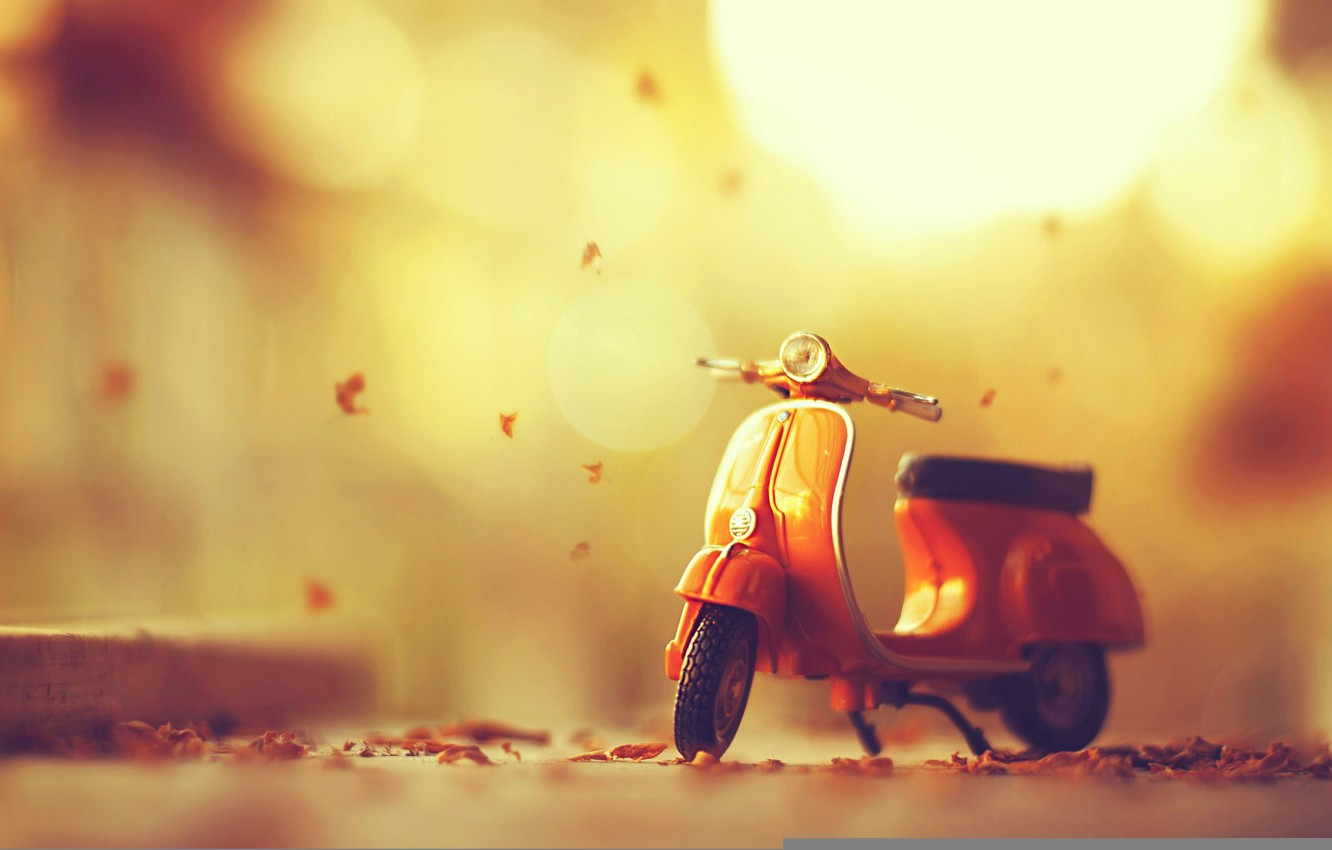 Photo wallpaper leaves, moped, autumn, leaves, autumn, moped
