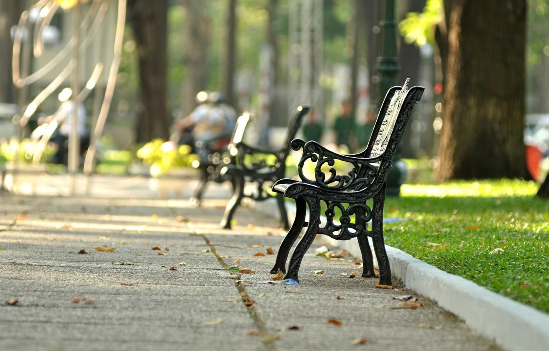 Photo wallpaper greens, grass, leaves, bench, Park, background, widescreen, Wallpaper, street, mood, shop, shop, wallpaper, square, bench, …