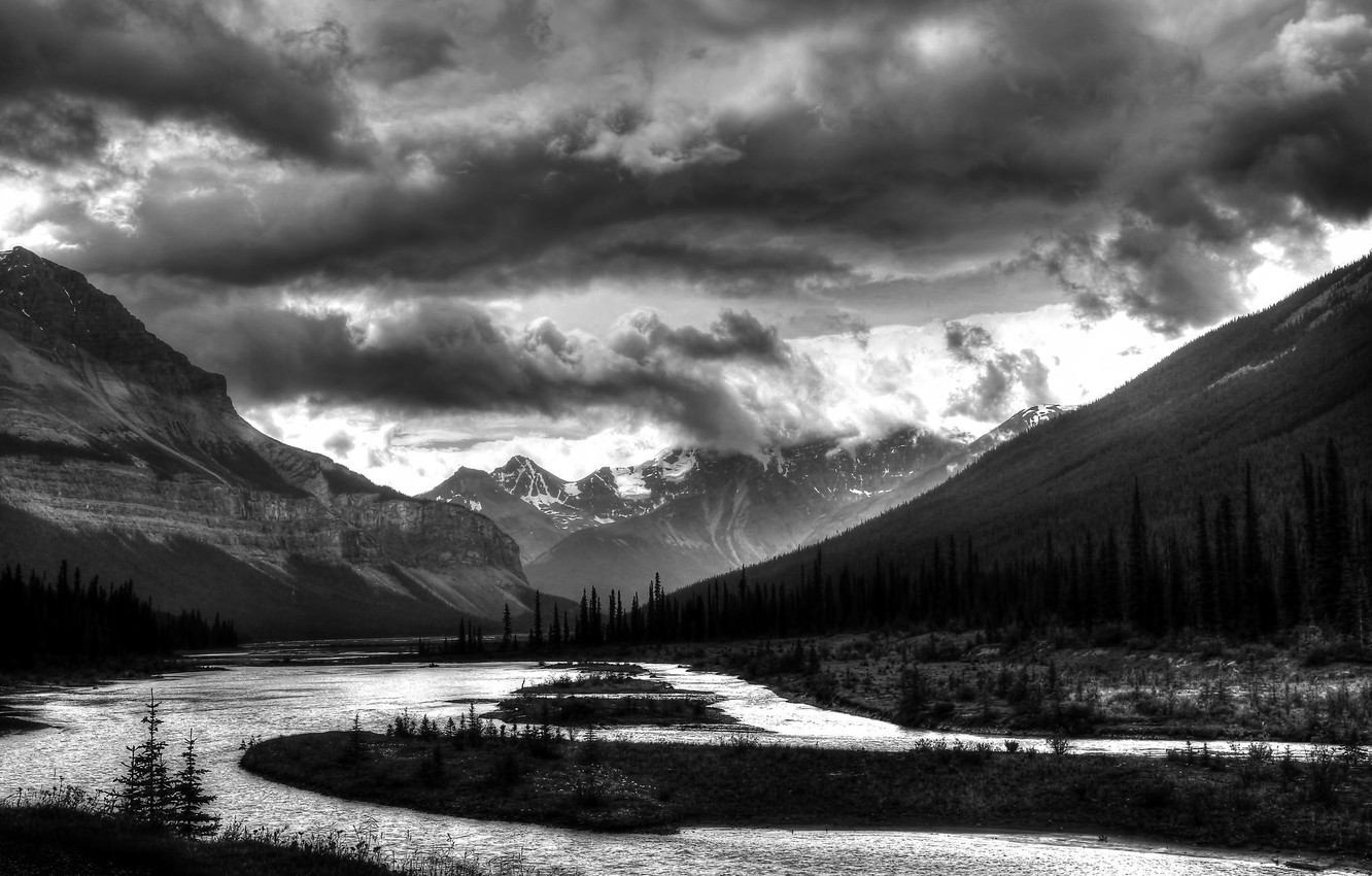 Wallpaper Forest Mountains River Photo Black And White Images