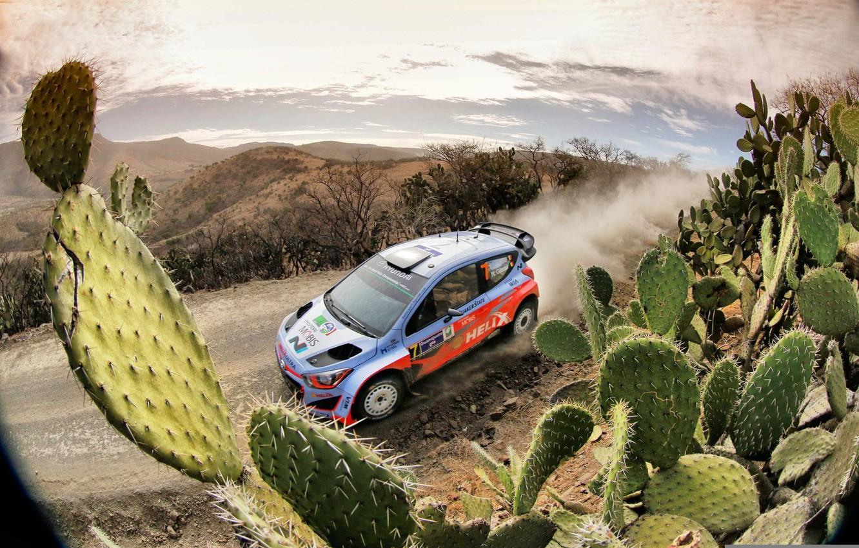 Photo wallpaper Dust, Hyundai, Mexico, WRC, Rally, Cactus, i20, Neuville