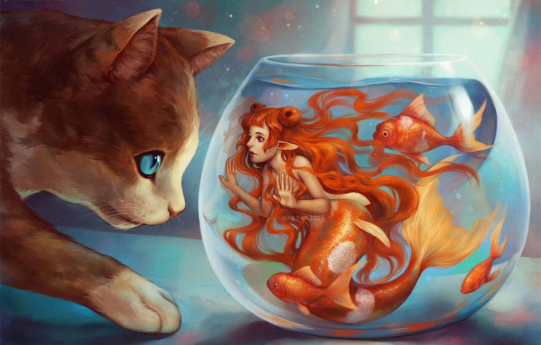 Photo wallpaper cat, fish, mermaid, aquarium, window, art, redhead