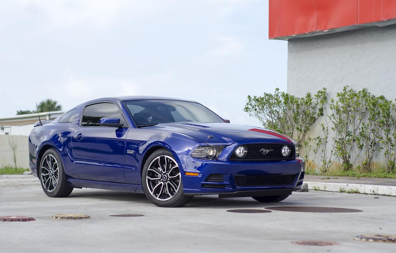 Photo wallpaper Mustang, blue, 5.0, 2013